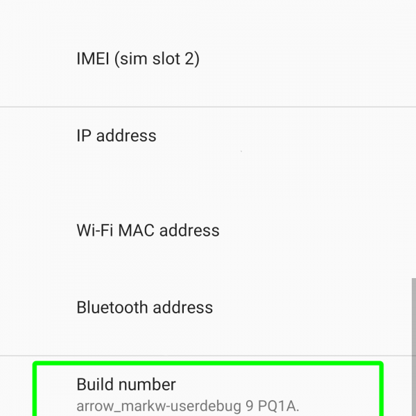 How to enable Developer mode in Android